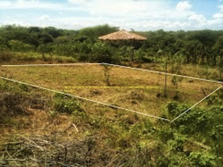 Laying-out-the-garden-plot-at-land-of-our-colleague-Norwalk-Nagarote-Sister-City-Projects-model-farm1